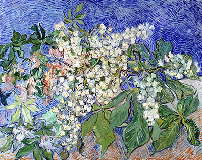 Blossoming Chestnut Branches Vincent van Gogh